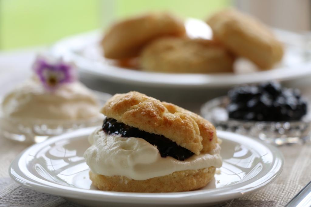 blcakcurrant jam and scone close up