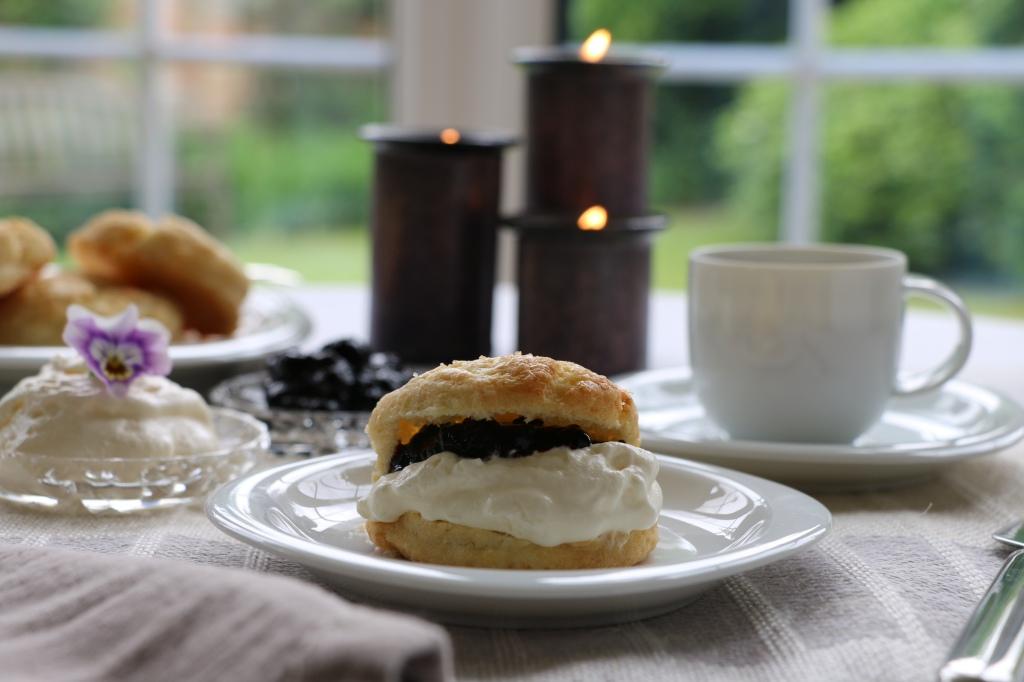 cream tea with scone and blackcurrant jam