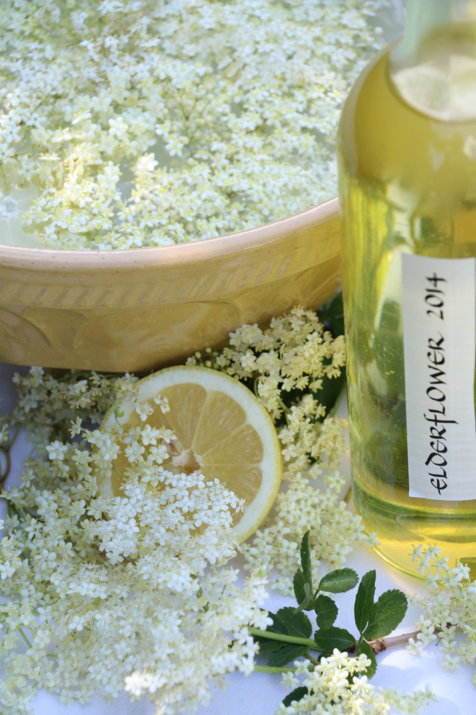 elderflower champagne in the making