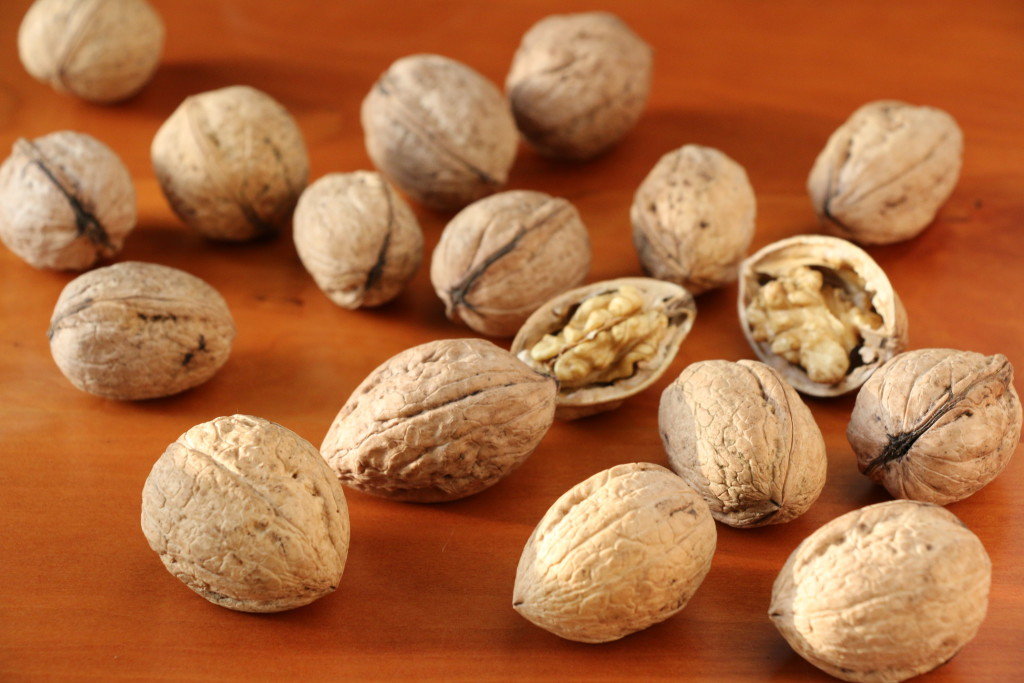 clutch of walnuts