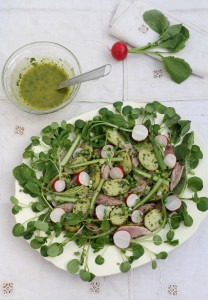 Crumbs on the table Spring Salad with wild garlic, new potatoes and radishes CN
