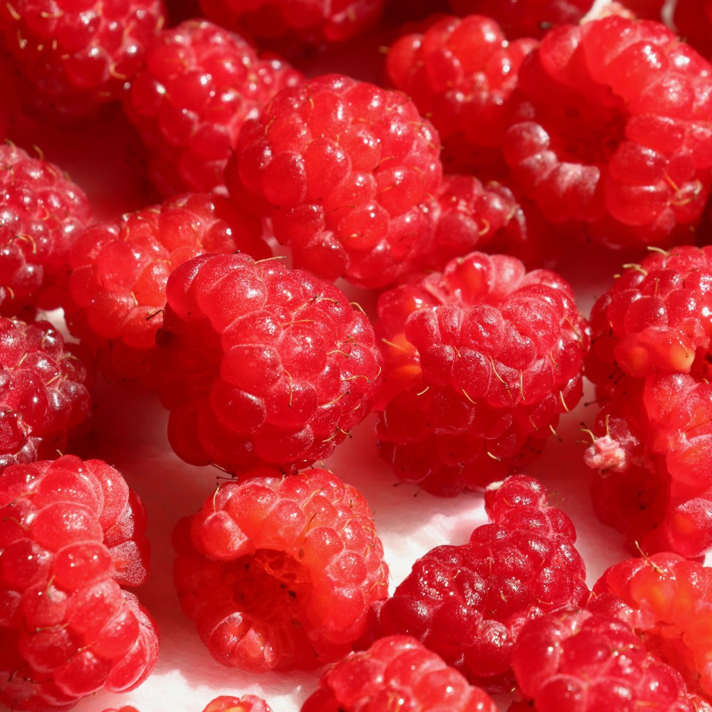 RaspberriesCNsquare